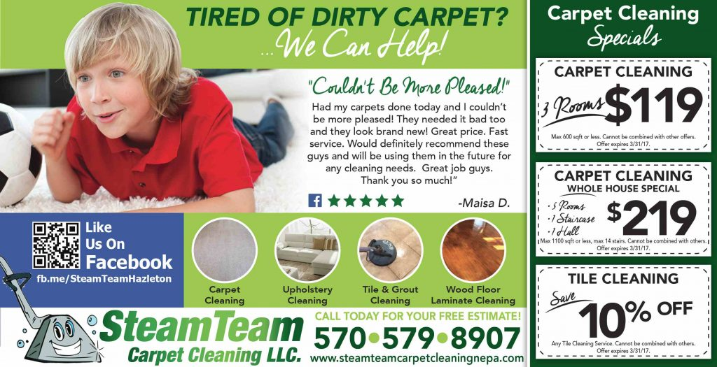 STEAM_TEAM_CARPET_CLEANING_FEB_2017-compressed