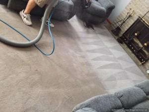 STEAM TEAM CARPET CLEANER WILKES BARRE NEPA